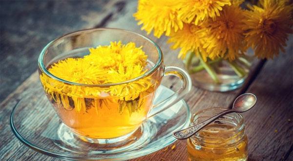 trà detox bồ công anh mang lại nhiều lợi ích sức khỏe