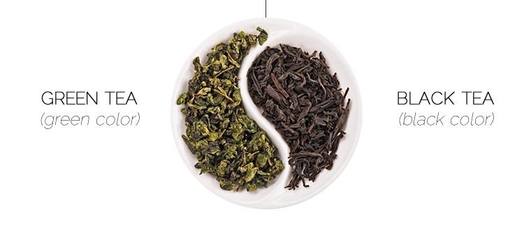 trà đen và trà xanh